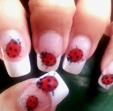 nail designs ladybug for beautiful ladies funyfashion