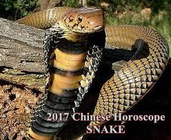 2017 horoscope predictions 2017 snake predictions for love and money snake horoscope 2017