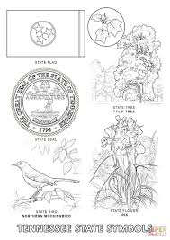 tennessee state symbols coloring page free printable coloring pages