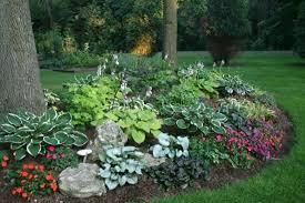 hosta garden layout ideas google search gardening pinterest