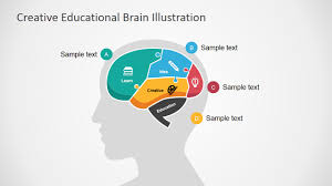 templates for powerpoint brain creative educational brain powerpoint template slidemodel