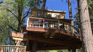 realwood tiny homes builds an amazing treehouse