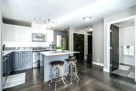 small galley kitchen remodel ideas condo remodel ideas wearpavonine com