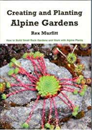 the rock garden plant primer easy small plants for containers
