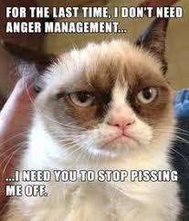Smiling Cat Meme - only grumpy cat lol too much fun