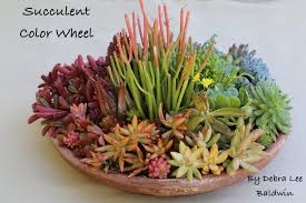 How To Make A Succulent Planter Create A Succulent Color Wheel In A Pot Youtube
