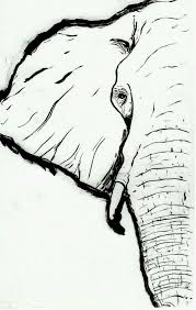 best 25 elephant drawings ideas on pinterest drawings of