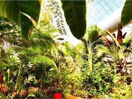 Okc Botanical Gardens by Oklahoma City Ok Real Estate Oklahoma City Homes For Sale Re Max
