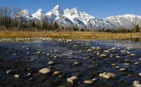 mountainzone life in the mountains