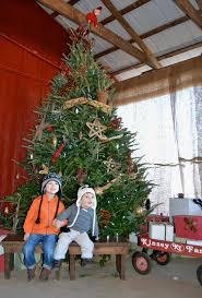 5 christmas tree farms you need to visit 52 forsyth