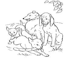 dogs coloring pages crazy coloring pages dogs heaven
