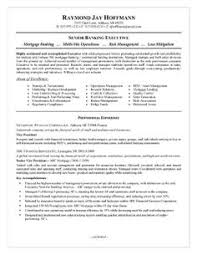 Sample Of Objective In Resume by It Sales Engineer Resume Example Resume Examples