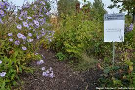garten und landschaftsbau ingolstadt beste ideen design fotos beispiele garten und