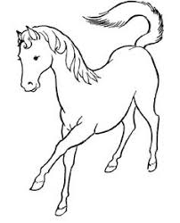 horse coloring shetland pony coloring book pictures