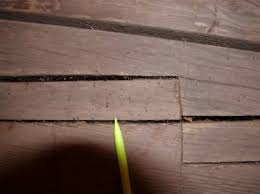 Powder Post Beetles In Hardwood Floors - fhwa hrt 04 098 chapter 10 issues related to wood covered bridge