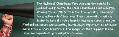 Pacific Northwest Christmas Tree Association - national christmas tree association u003e member center u003e contribute