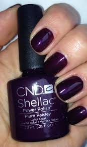 best 25 purple shellac nails ideas on pinterest plum nails
