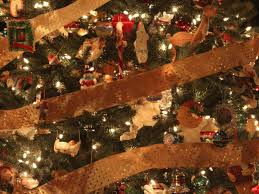 waukesha starts christmas tree collection waukesha wi patch