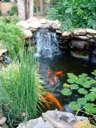 How To Make A Patio Pond Koi Ponds Don U0027t Need To Look Like Black Liner Pools Koi Formal