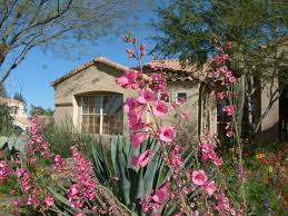 garden design garden design with winter interest plants for your