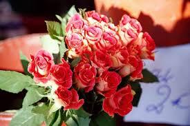 imagenes para enamorar con flores cómo son los mejores ramos de flores para enamorar en san valentín