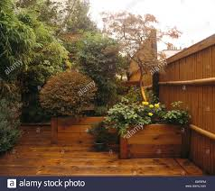 bamboo fence and wooden decking on city roof garden with small