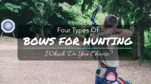 bows for best compound bow for beginners 2017 reviews and buying guide