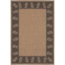 Place Area Rug Living Room Decorating Awesome Couristan For Modern Interior Design