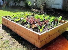Raised Vegetable Garden Ideas Raised Veggie Garden Creating Raised Garden Beds Diy Raised