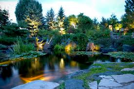 Aquascape Chicago Pond And Landscape Lighting Tropical Landscape Chicago By