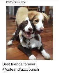 Friends Forever Meme - partners in crime best friends forever crime meme on me me