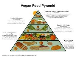 veganfoodpyramid png