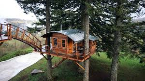 treehouse home plans free treehouse plans house plans free single tree building for