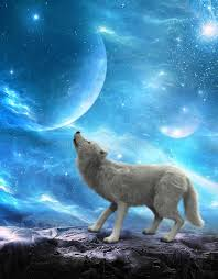 white wolf howling moon moons stock image image of cosmos