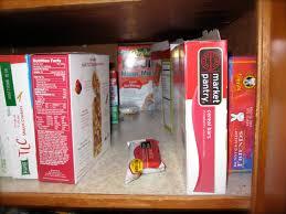 how to organize deep shelves ask anna