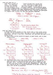 bronstonapbio ap biology daily journal