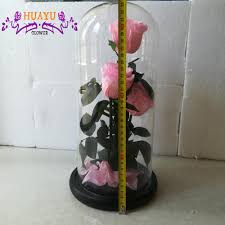 beauty and the beast art preserved flower rose in glass tubes