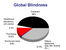 Cataract Leads To Blindness Due To Who Blindness Vision 2020 The Global Initiative For The
