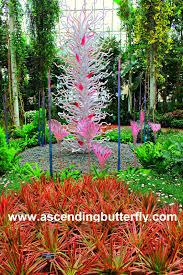 New York Botanical Garden Directions Ascending Butterfly April 2017