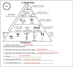 ideas of food webs worksheets on proposal huanyii com