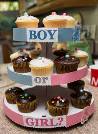 thanksgiving gender reveal gender reveal for my 2nd baby