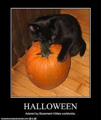 Happy Halloween Meme - happy halloween adventures in life love and librarianship