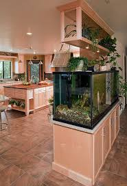 Dura Supreme Cabinet Construction Built In Fish Tanks Kitchen Transitional With Dura Supreme