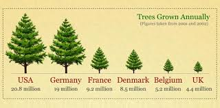 tree facts and statistics infographic the fact site