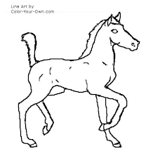 coloring excellent foal coloring pages horse sitting