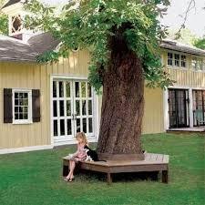 Tree Ideas For Backyard Backyard Bench Around The Tree Diy Backyard Ideas