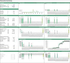 Financial Modeling Excel Templates Forecasting The Flows Of A Forestry Project Executive Summary