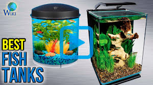 top 8 fish tanks of 2017 video review