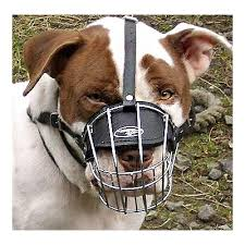 american pitbull terrier size chart wire basket dog muzzle for american pit bull terrier this muzzle