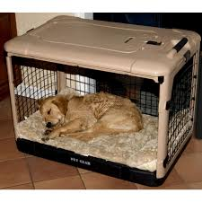 pet gear the other door steel crate with black mat and carry bag